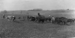 H.C. Morrison at Asbury College Farm (on cart - zoomed out)