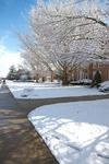 Lexington Avenue - Snowy South Shot - Vertical