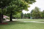 Campus Greens 2012