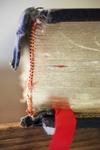 A Bible's Binding