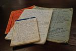 Medine Keener's Journals - 5