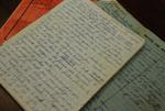 Medine Keener's Journals - 8