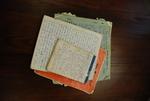 Medine Keener's Journals - 13