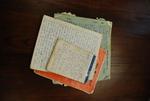 Medine Keener's Journals - 14