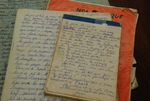 Medine Keener's Journals - 15