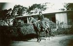 Allen, F. Grace, South Africa